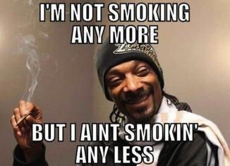 Snoop Dogg, yo funny brooo!