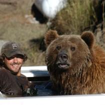 Big Bear: A Man's Best Friend?