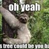 11 Funny Dirty Sloth Memes!