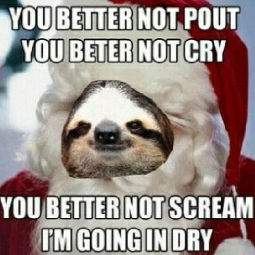 Funny Sloth Memes 18