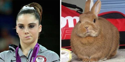 Image Olympian-McKayla-Maroney-and-this-unimpressed-bunny.jpg