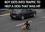 Now That's a Best Friend… (Dog & Boy)