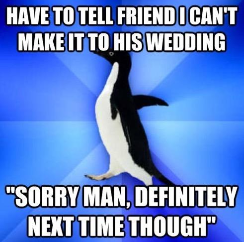 Socially Awkward Penguin 1