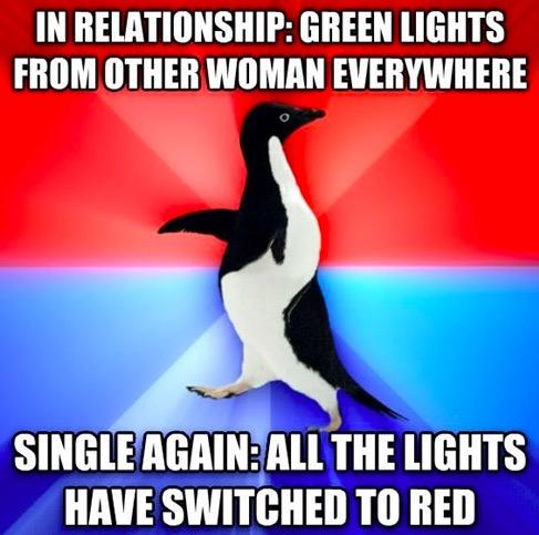 Socially Awkward Penguin 10