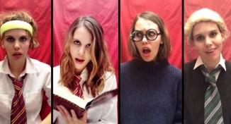 Harry Potter & Taylor Swift Parody Mashup (Video)