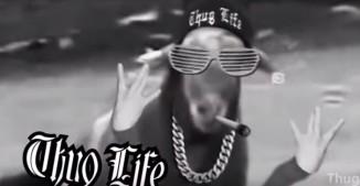 Bringing You That Animal Thug Life Videos