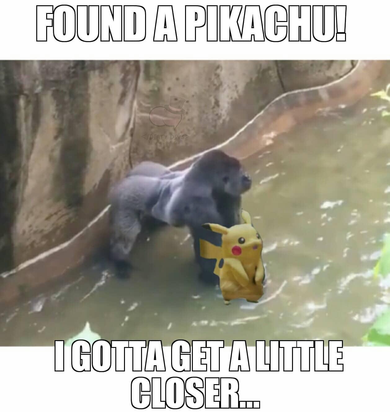 Funny Pokemon go pics