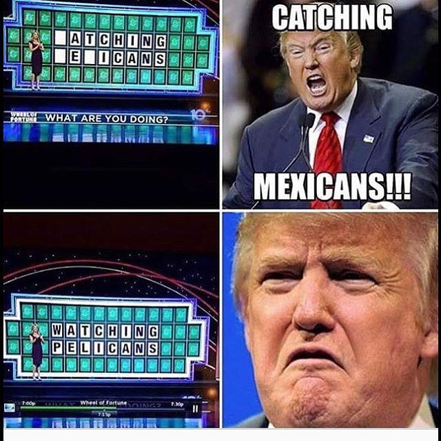 Best Trump Memes