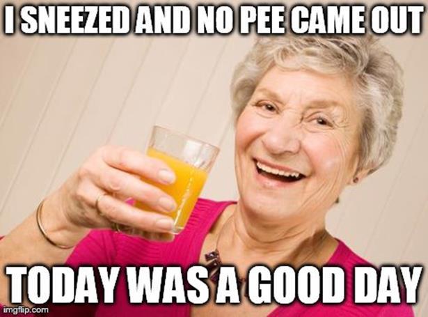 Old Lady Meme
